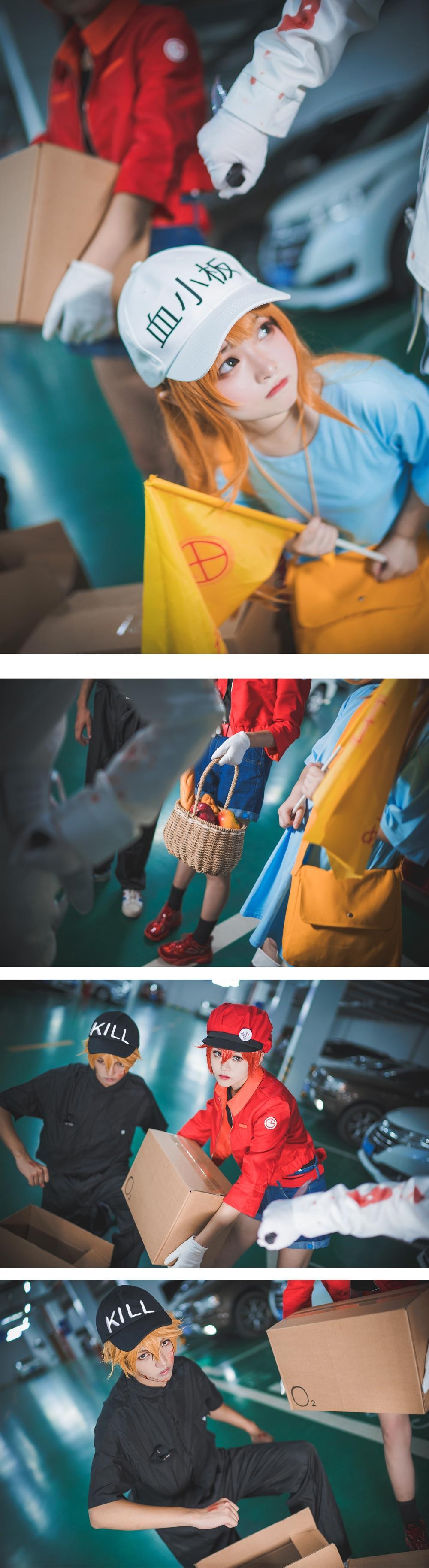 《工作细胞》正片cosplay【CN:枫鵺rain】-第10张